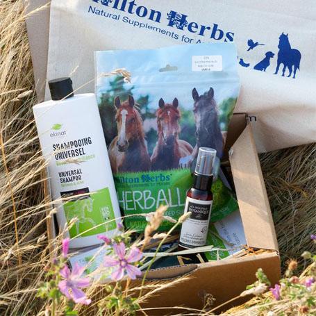 BOX : Les Merveilles Equines